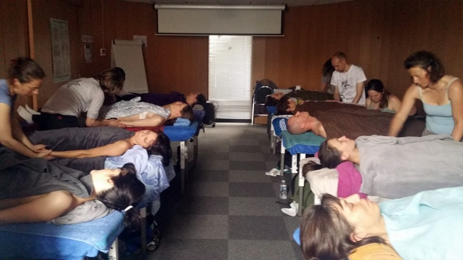 formation Réflexologie palmaire - Versailles 2016