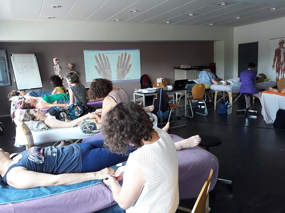 formation Réflexologie palmaire (Troyes)