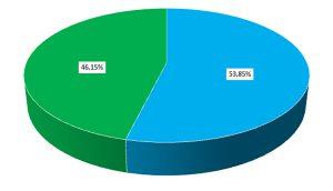 Composition du groupe (nombre de participants, niveaux homogènes)